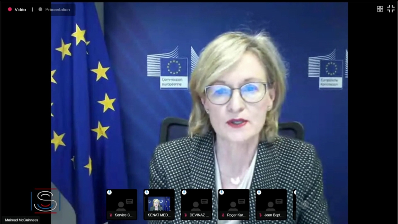 Mairead McGuinness, la commissaire européenne des Finances était auditionnée ce matin au Sénat par les commissions des Finances et des Affaires européennes. Elle est revenue sur les mécanismes financiers et les risques associés à la politique écon...