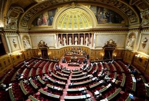 Le Sénat a approuvé mardi, malgré l'opposition des communistes et d'une partie des socialistes, l'article 1 du projet de loi habilitant le gouvernement à légiférer par ordonnances pour réformer le code du travail