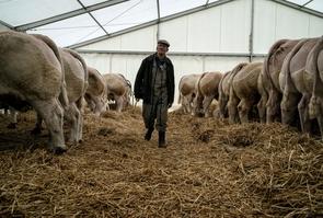 agriculteurs_jeff_pachoud_afp.jpg