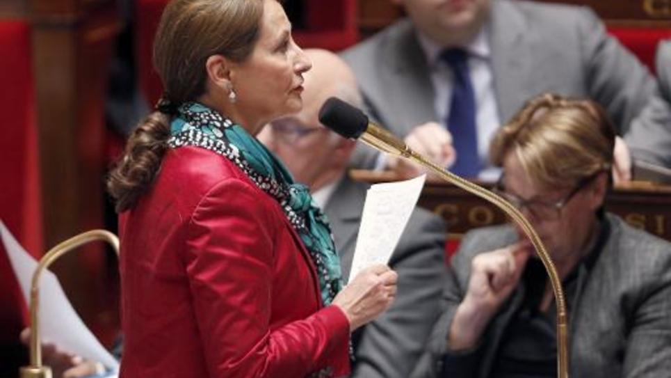 La ministre de l'Ecologie Ségolène Royal à l'Assemblée nationale le 17 mars 2015