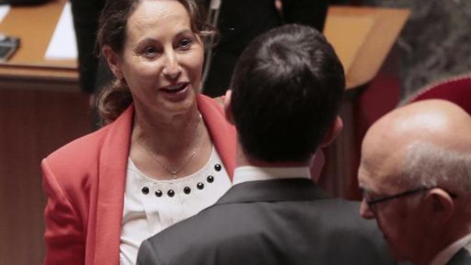 La ministre de l'Energie Ségolène Royal à l'Assemblée Nationale, le 1er juillet 2014 à Paris