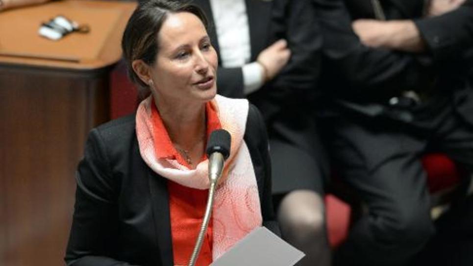 La ministre de l'Ecologie, Ségolène Royal, à l'Assemblée nationale le 14 mai 2014