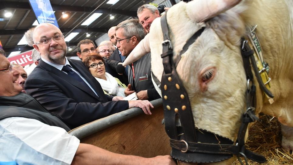 Le ministre de l'Agriculture Stéphane Travert, lors de sa visite au salon de l'élevage de Rennes, le 12 septembre 2017