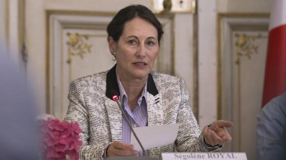 La ministre de l'Ecologie et du Développement durable Ségolène Royal le 3 juillet 2014 lors d'une conférence de presse à Paris