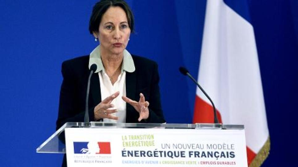 La ministre de l'Ecologie Ségolène Royal, le 18 juin 2014 à Paris