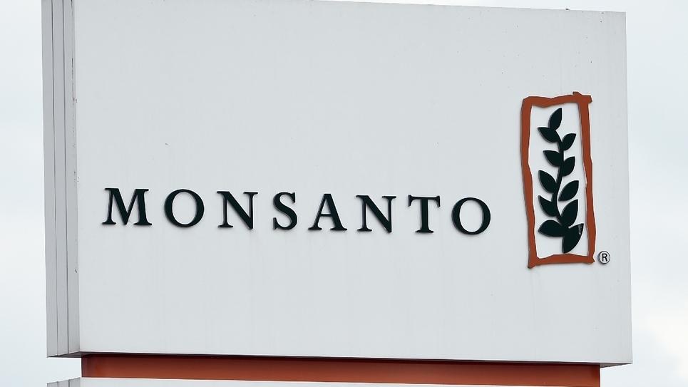 """Le groupe chimique allemand Bayer, propriétaire de Monsanto, a indiqué qu'il n'avait """"pas connaissance"""" de fichiers de personnalités commandés par sa filiale et répertoriant leur position sur les pesticides"""