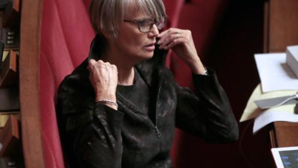 La député d'Europe-Ecologie Les Verts (EELV) Véronique Massonneau siège à l'Assemblée nationale, le 29 janvier 2013