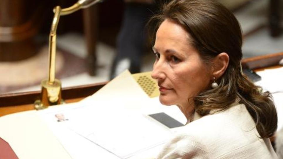 La ministre de l'Écologie et de l'Énergie Ségolène Royal à l'Assemblée nationale le 16 décembre 2014