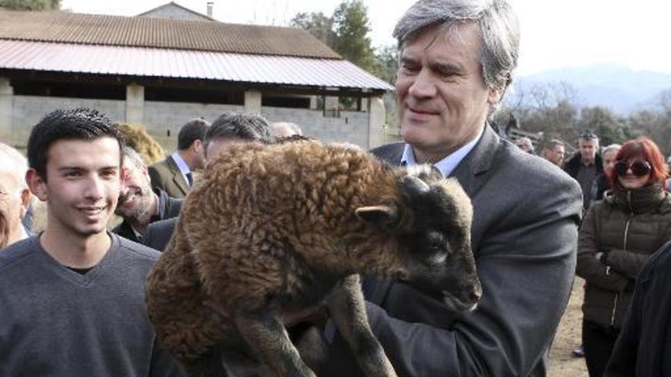 Stéphane Le Foll lors de la visite d'une ferme le 13 février 2015 à Sarolla-Carcopino