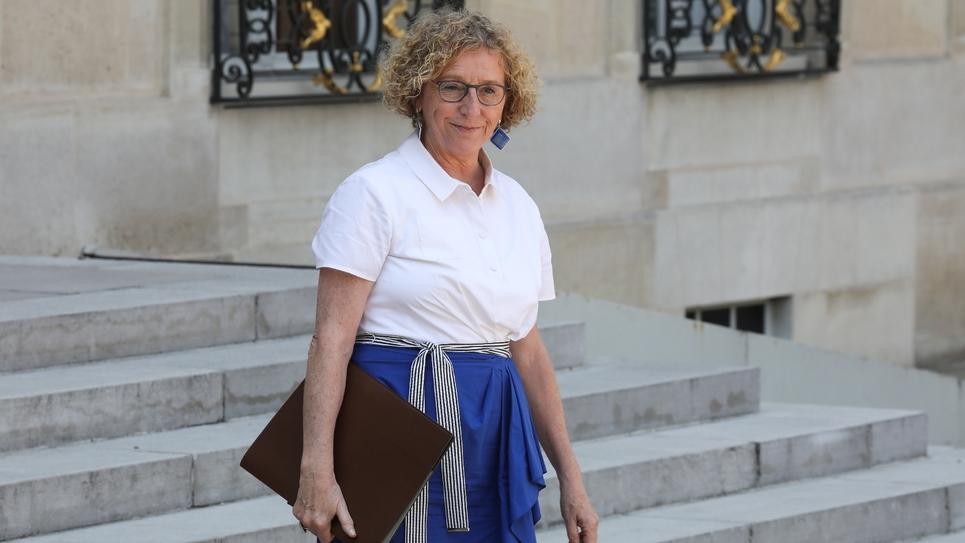 """La ministre du Travail Muriel Pénicaud avait admis, lors d'une audition à l'Assemblée nationale début juin, que le PEC avait """"mis un petit temps d'appropriation"""""""