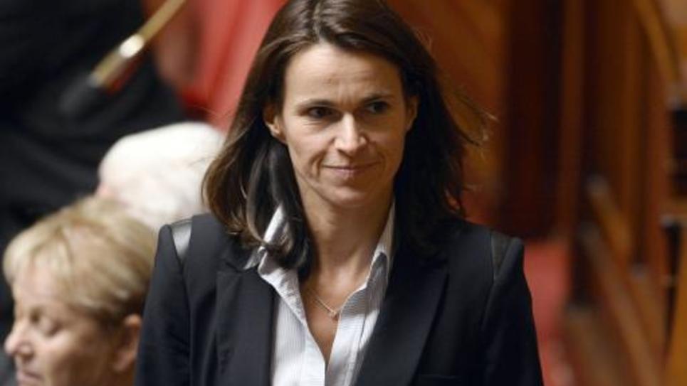 Aurélie Filipetti, députée PS, à l'Assemblée nationale, le 28 octobre 2014