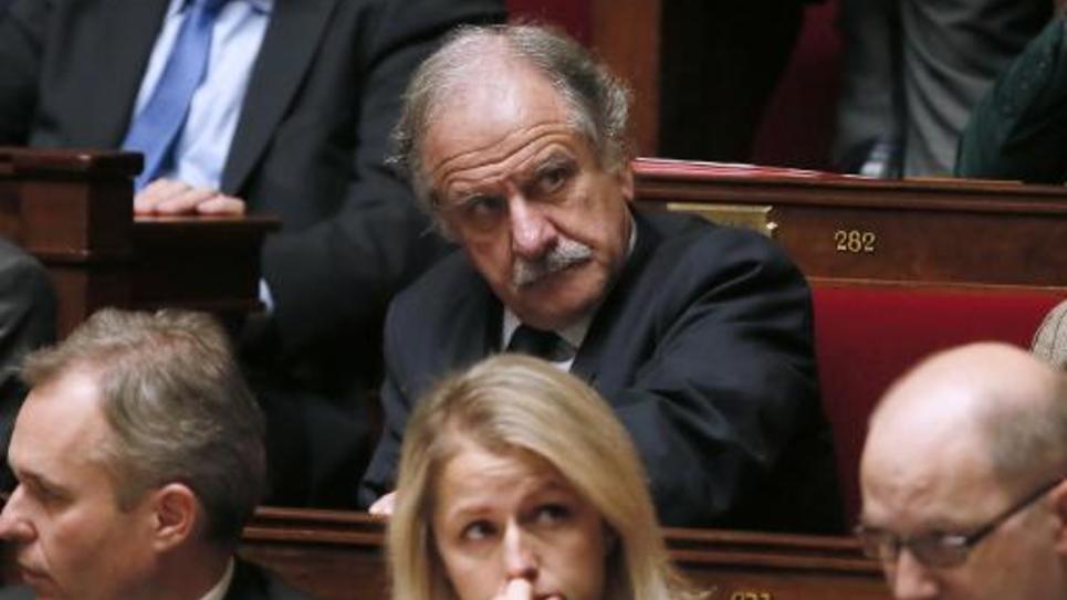 Le député écologiste Noël Mamère dans l'hémicycle de l'Assemblée Nationale à Paris le 22 octobre 2013