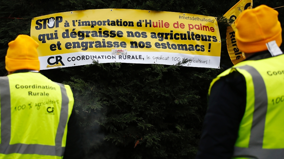 Manifestation d'agriculteurs contre l'importation d'huile de palme en France, le 27 novembre 2018