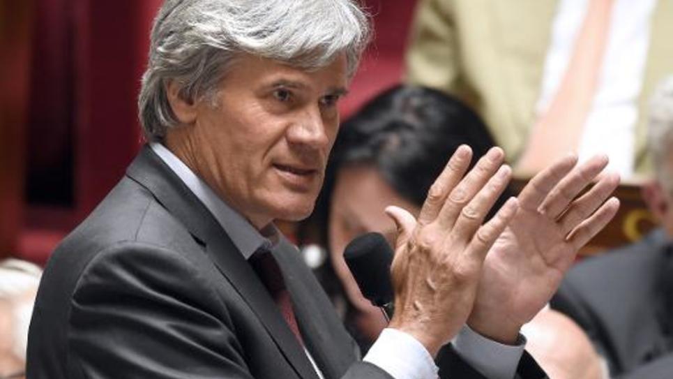 Le ministre de l'Agriculture et porte-parole du gouvernement Stephane Le Foll, le 18 juin 2014 à l'Assemblée nationale