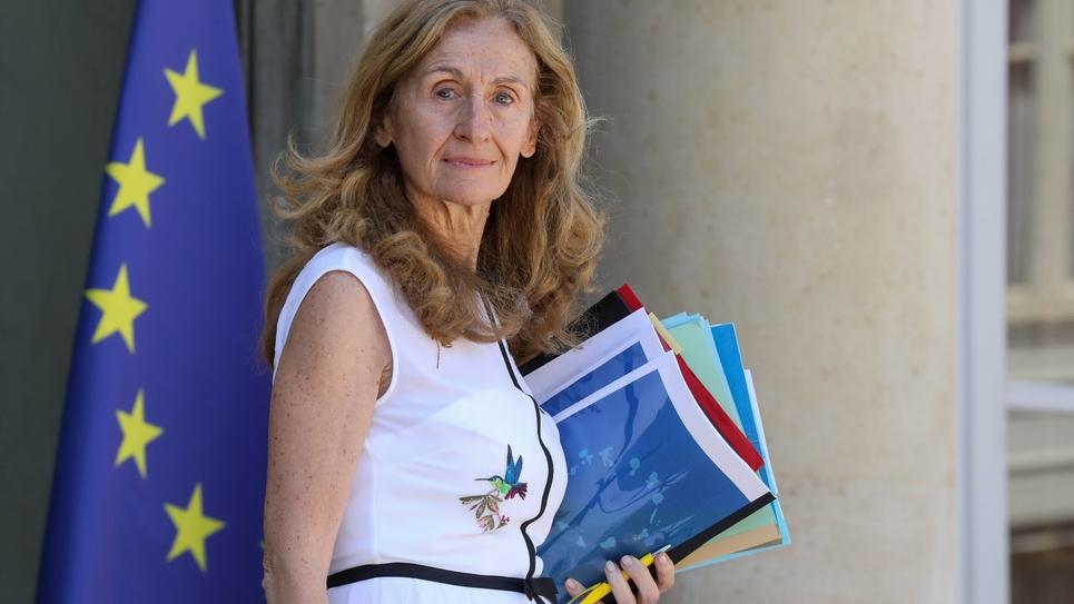 La ministre de la Justice Nicole Belloubet veut s'attaquer à une surpopulation carcérale record, avec le plan prison qu'elle présente mercredi