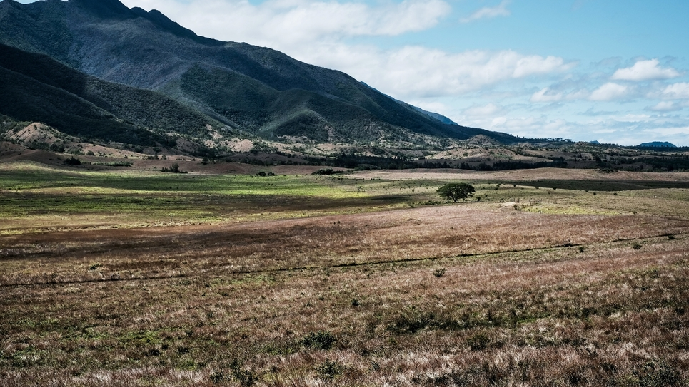 Plaines défrichées à Paita (Nouvelle-Calédonie)