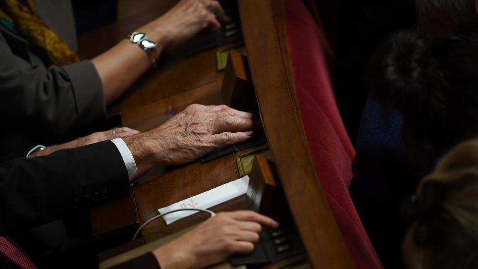 """L'Assemblée a adopté dans la nuit de lundi à mardi le projet de budget 2020 pour l'agriculture, prévu en hausse, mais dénoncé par les oppositions comme """"pas à la hauteur"""" ni de nature à """"redonner espoir"""" à des paysans qui """"n'ont pas le moral""""."""