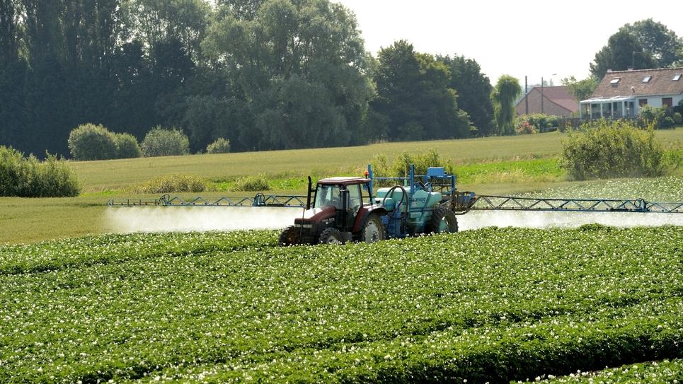 Trois ministères vont ouvrir pour trois semaines une consultation en ligne, ouverte à tous, sur les distances minimales à respecter entre habitations et zones d'épandage de produits phytosanitaires agricoles