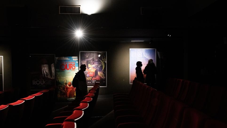 PARIS - CINEMAS FERMES OCCUPES - ATTENTE REOUVERTURE - CULTURE EN DANGER
