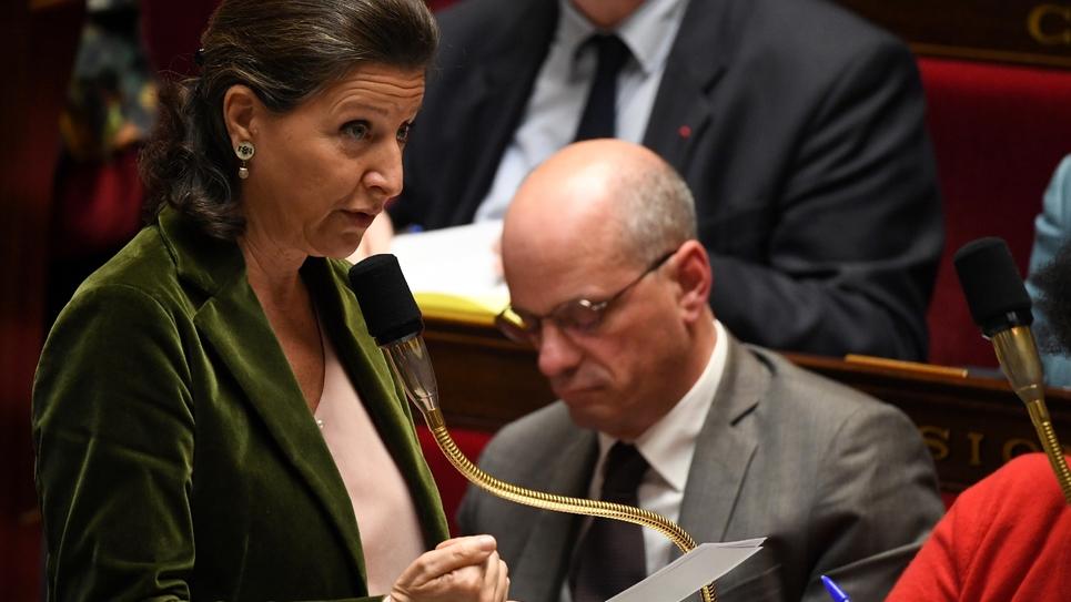 La ministre de la Santé Agnès Buzyn à l'Assemblée nationale à Paris, le 22 octobre 2019