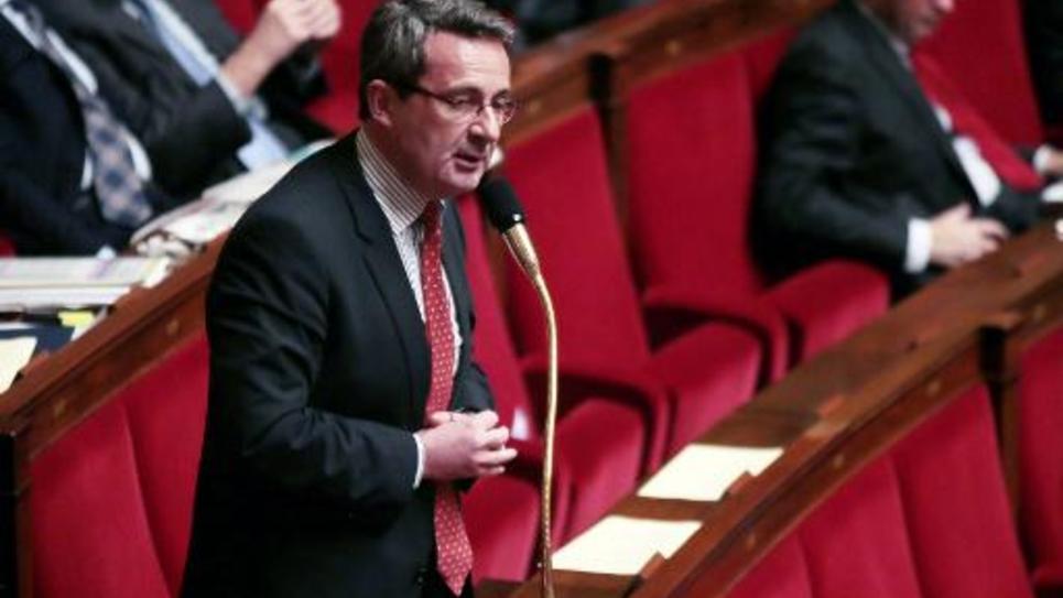Jean-Christophe Fromentin à l'Assemblée nationale à Paris, le 23 janvier 2013