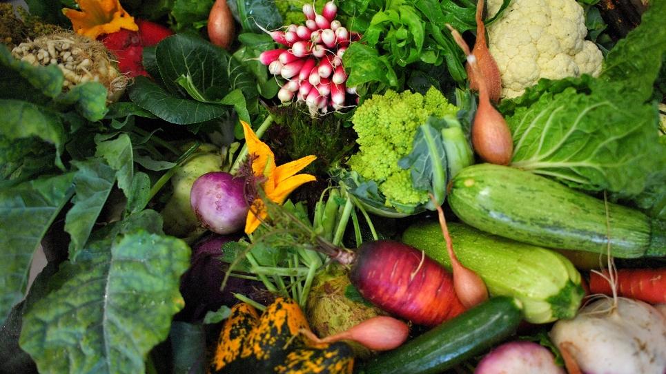 Les Etats généraux de l'alimentation qui rassemblaient agriculteurs, industriels, distributeurs et associations environnementales, se sont conclus sur une note acide avec l'affaire Lactalis