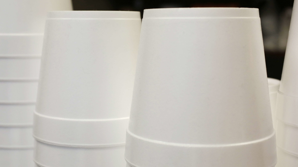 Plastic Foam Containers
