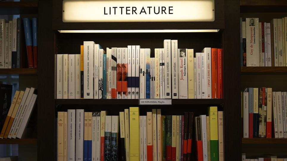 Littérature, livres