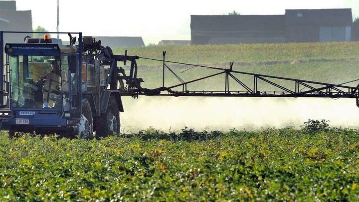 Pesticides épandus dans les vignes
