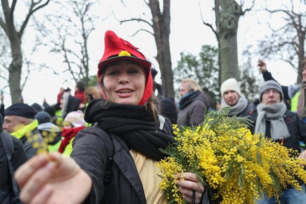 """Une manifestante """"gilet jaune"""" offre des brins de mimosa, samedi 19 janvier 2019 à Paris"""