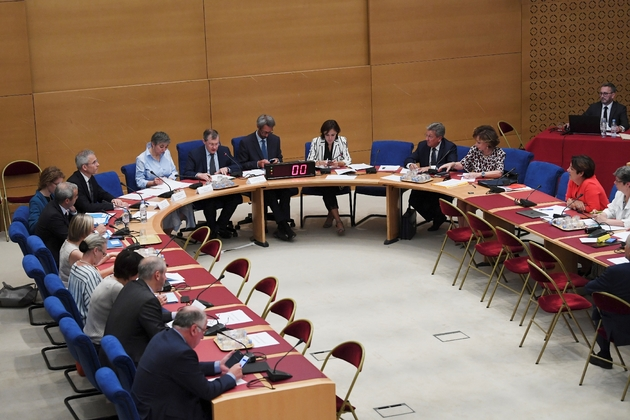 La commission d'enquête du Sénat, le 30 juillet 2018