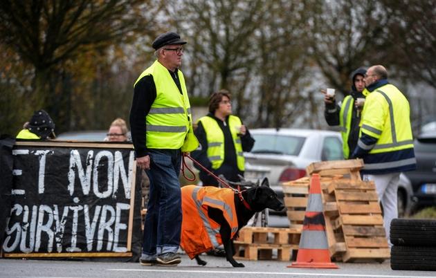 """""""Nous voulons vivre et non survivre"""" dit la pancarte des 'Gilets Jaunes', à Torce près de Rennes le 2 décembre 2018"""