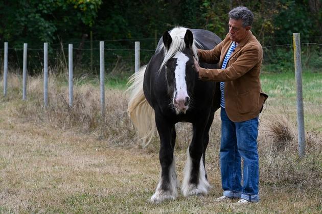 """Yves Cochet et son cheval """"Viking"""", le 13 septembre 2019 chez lui en Ille-et-Villaine"""