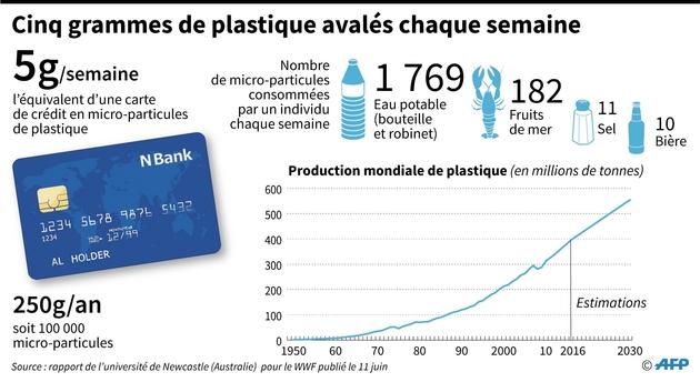 Cinq grammes de plastique avalés chaque semaine