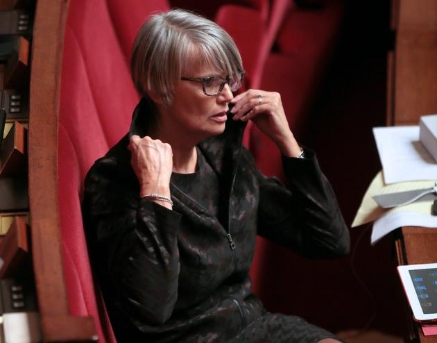 La députée écologiste Véronique Massonneau à l'Assemblée nationale le 29 janvier 2013