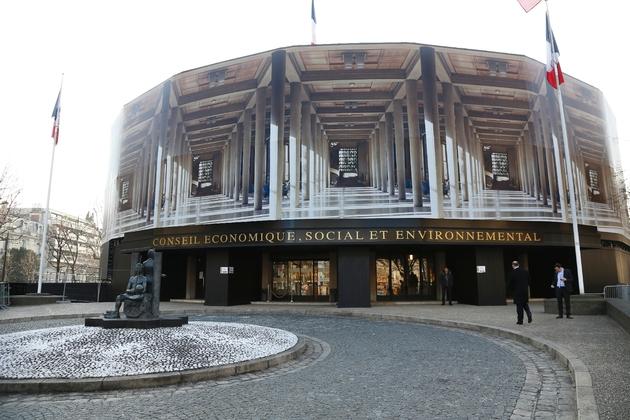 Le Conseil économique, social et environnemental (Cese) à Paris en février 2015