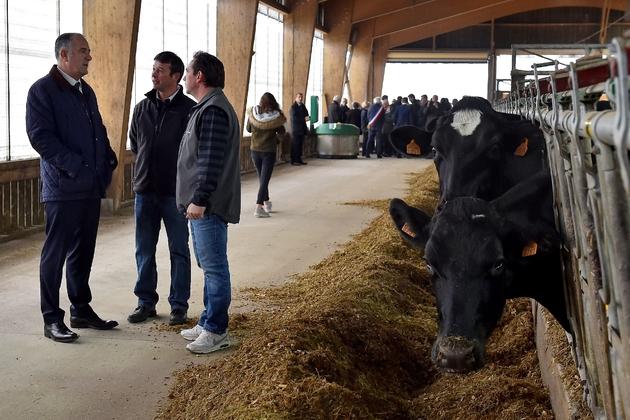 Le ministre français de l'Agriculture Didier Guillaume lors d'une visite d'une ferme d'élevage bovin, le 26 octobre 2018 à Montzeville, dans l'est de la France