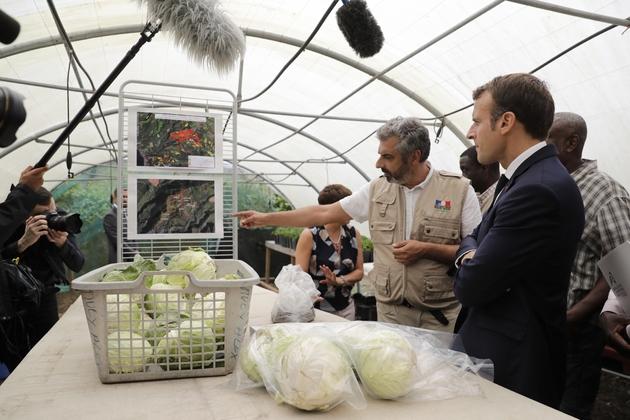 Le président français Emmanuel Macron visite une ferme autour du thème de la pollution au chlordécone, à Morne Rouge en Martinique le 27 septembre 2018
