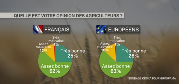 sondage_1.png