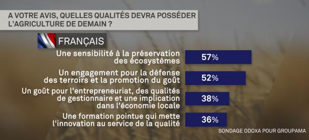 sondage_3.png