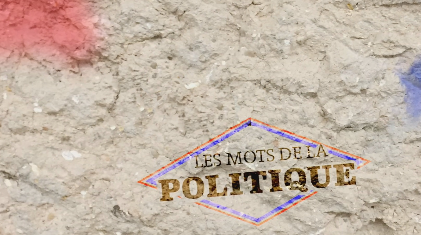 Les mots de la politique