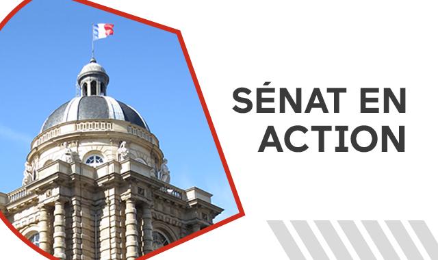 senat_en_action principal